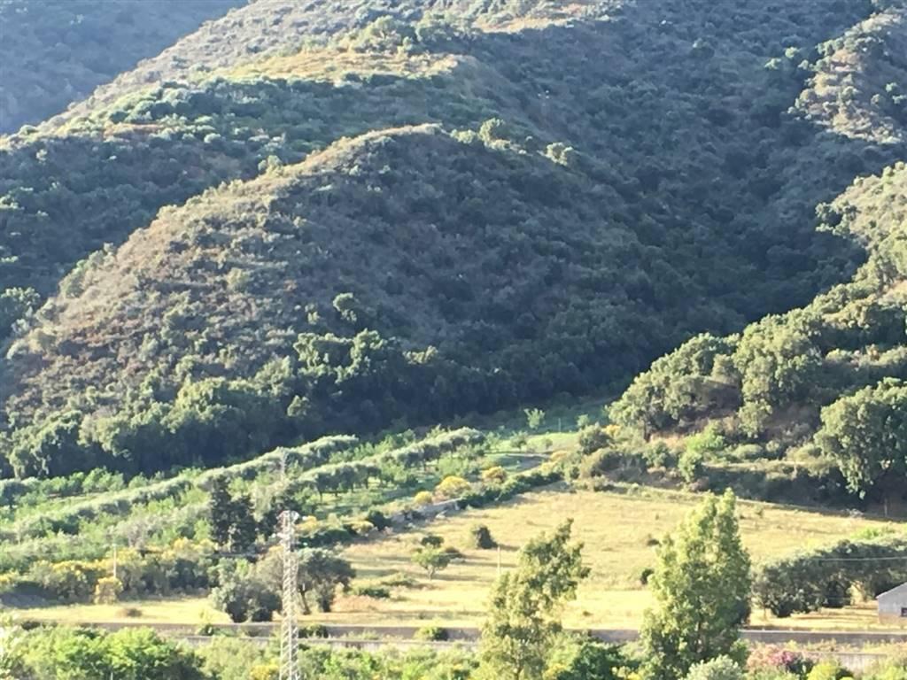 112 – Terreno agricolo a NASO